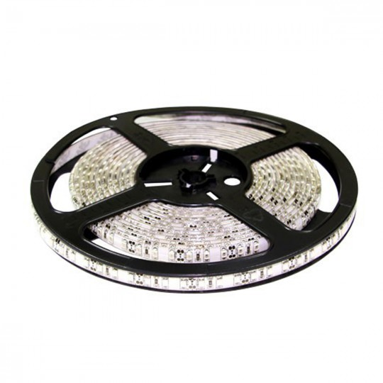 Диодная лента LED Premium 3528-6000LED-W-12 (холодный белый)