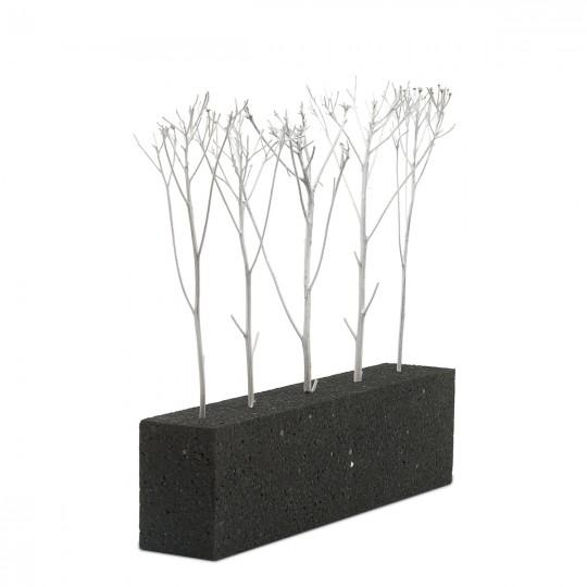 Дерево белое натуральное без листвы, 13-17 см