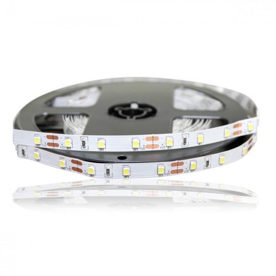 Диодная лента LED Premium 2835-3000LED-W-12 (холодный белый)