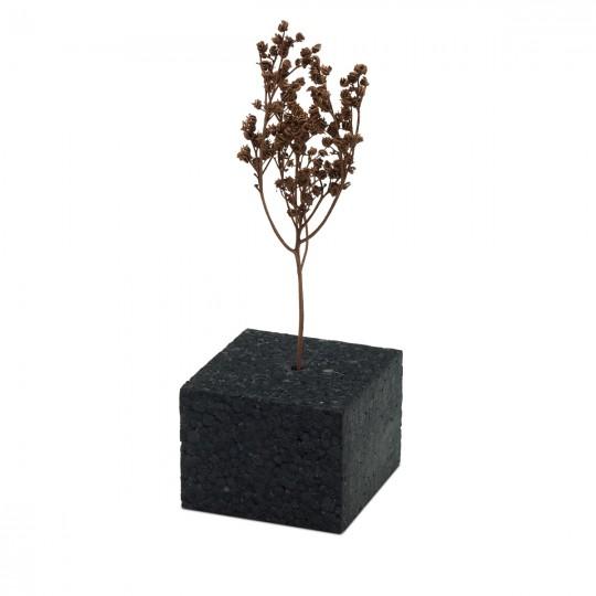 Дерево бронзовое натуральное с кроной 7-10 см